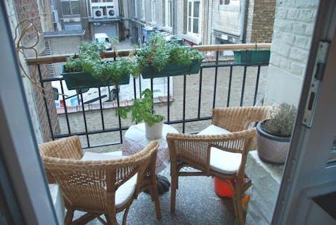 Charming 1 bedroom flat + office + terrace