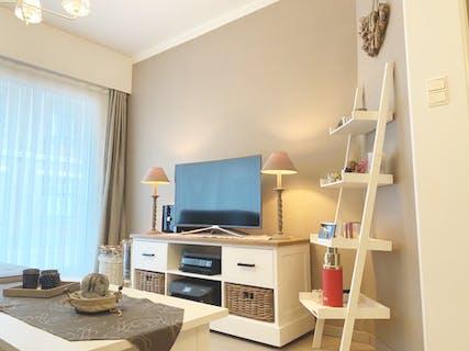 Recent gerenoveerd appartement in Blankenberge
