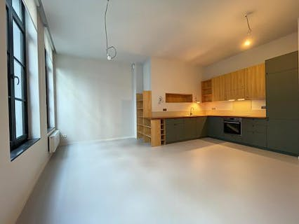 Renovated luxury apartment in the historic centre of Brussels