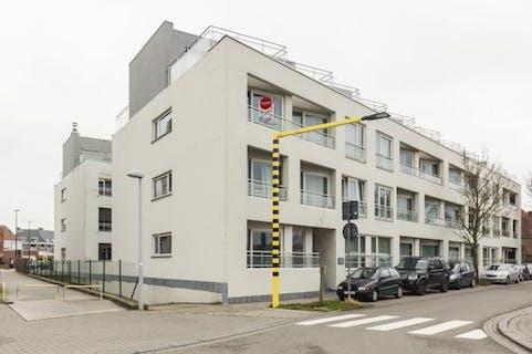 Nieuwbouwappartement met 2 kamers in centrum Waregem